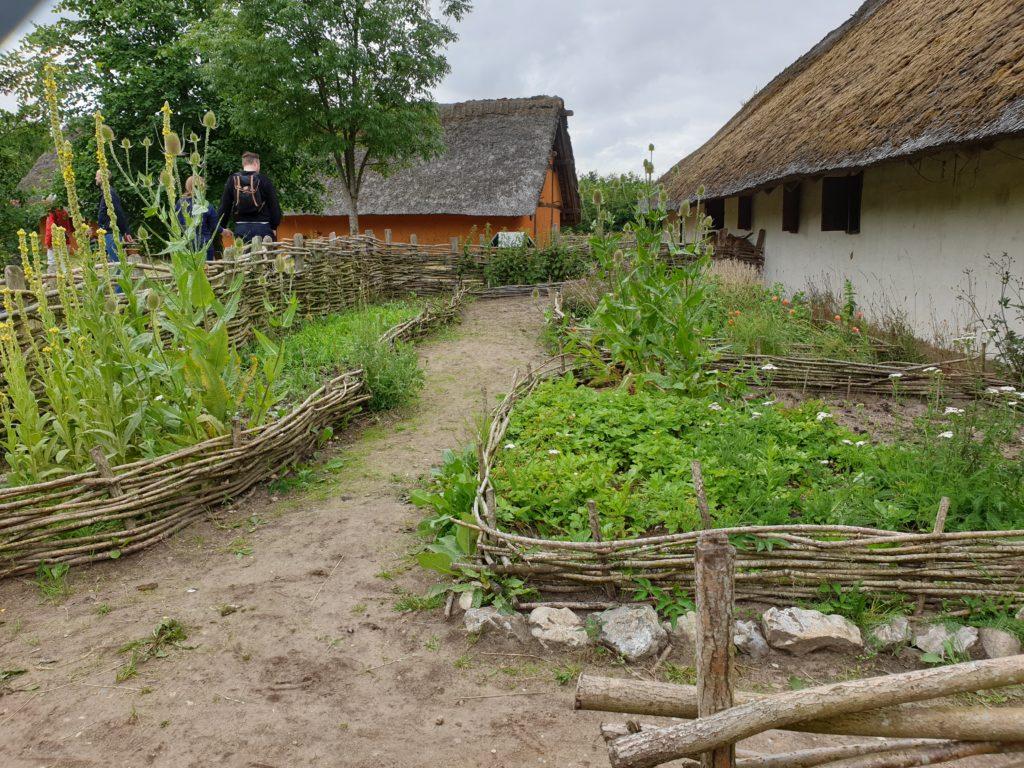 Ripa Dorf