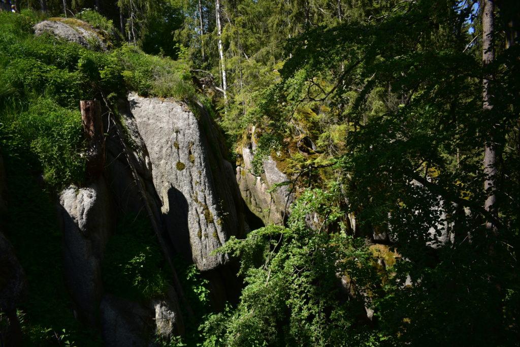 Wildes Erzgebirge