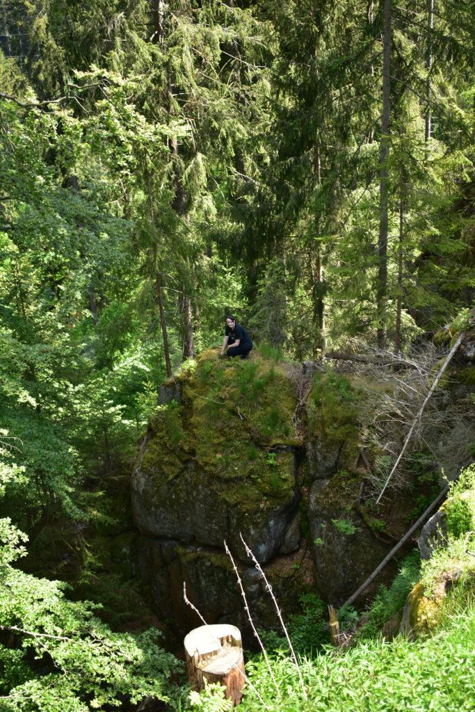 Wirklich wildes Erzgebirge