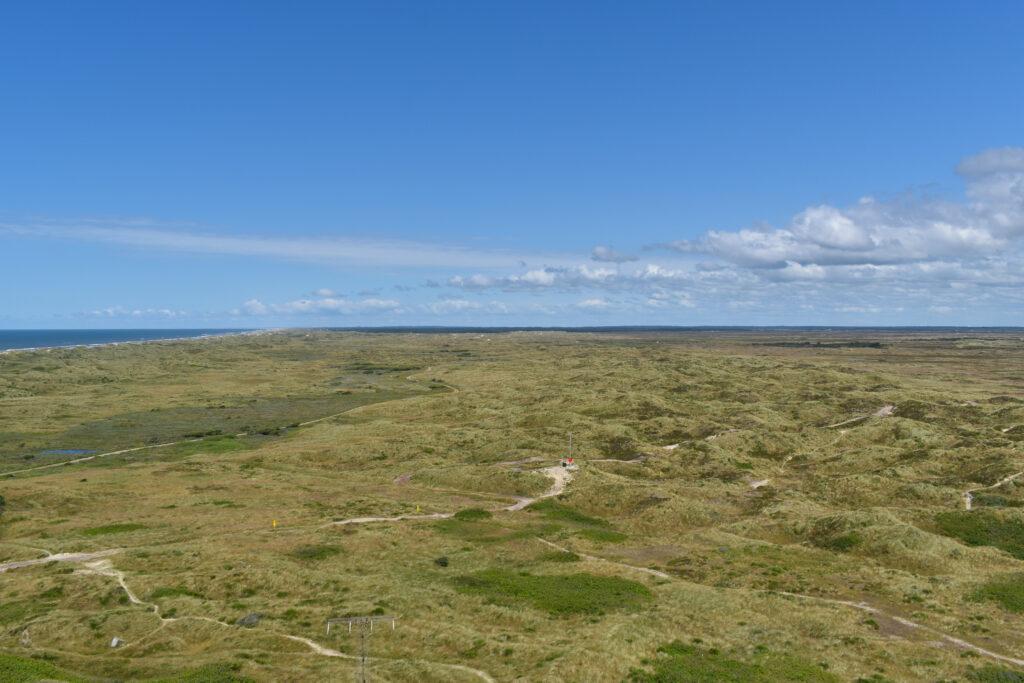 Blåvand Landschaft